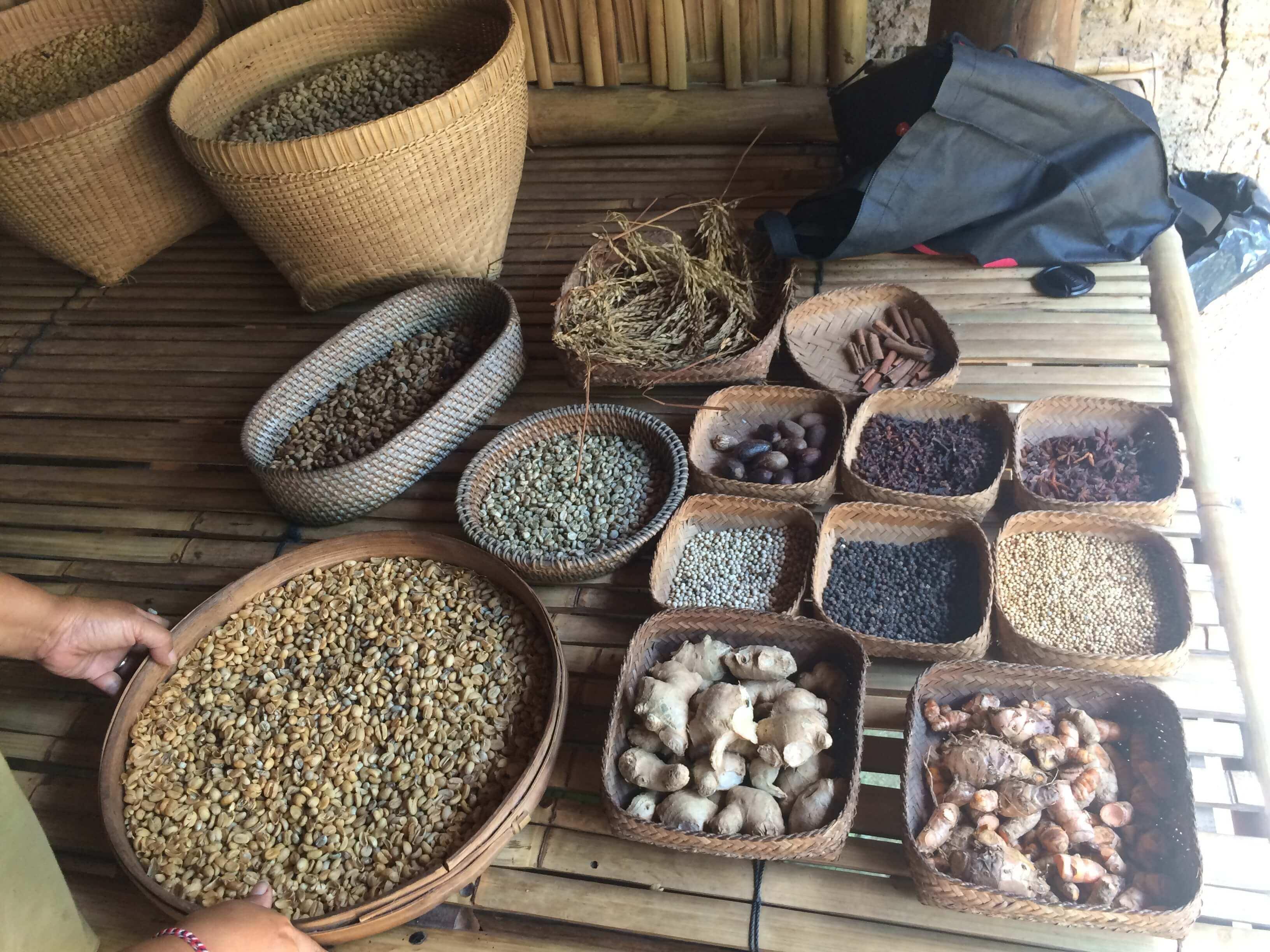 Coffee-Farm-Luwak-Coffee-Annaway-Bali-Travel