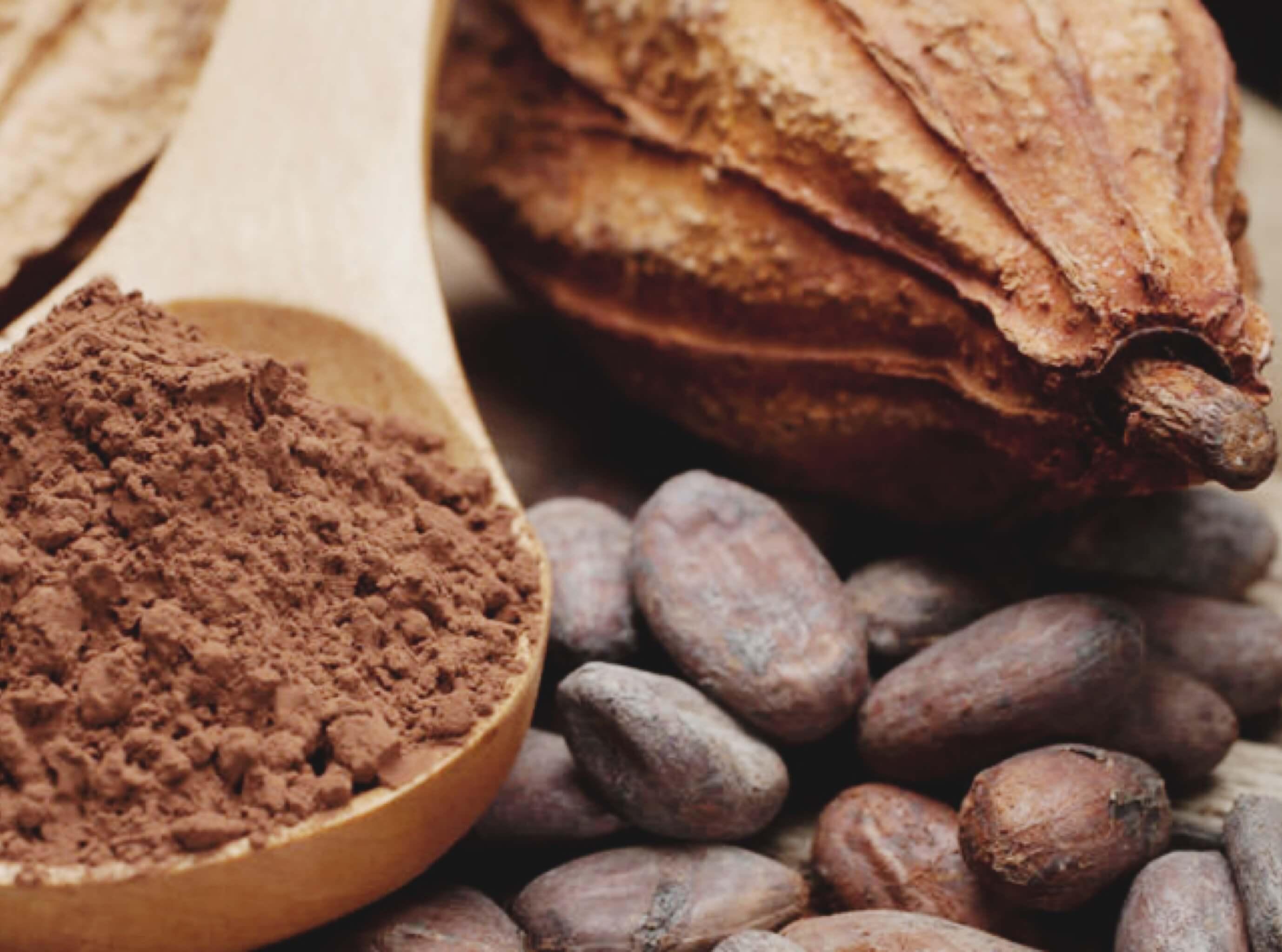 Annaway Travelblog Anna Der Duft der Welt Kakao