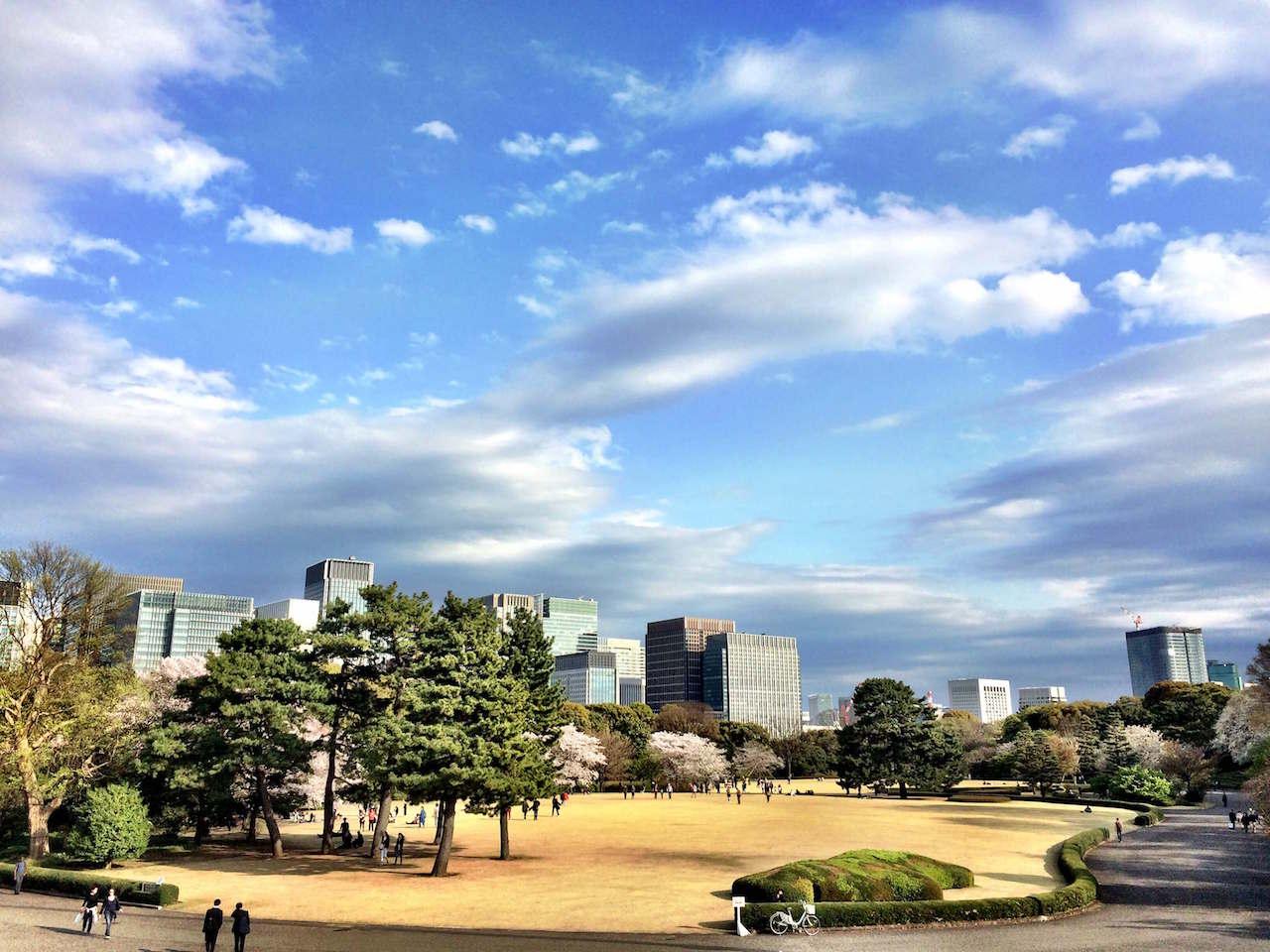 Kirschblüten in Tokio Annaway Travelblog 1221 Park