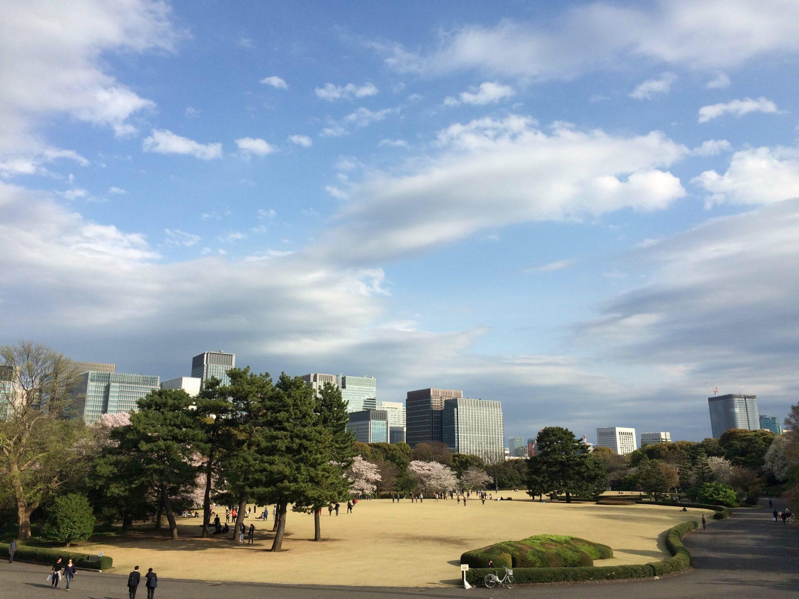 Kirschblüten in Tokio Annaway Travelblog 1221 park 2