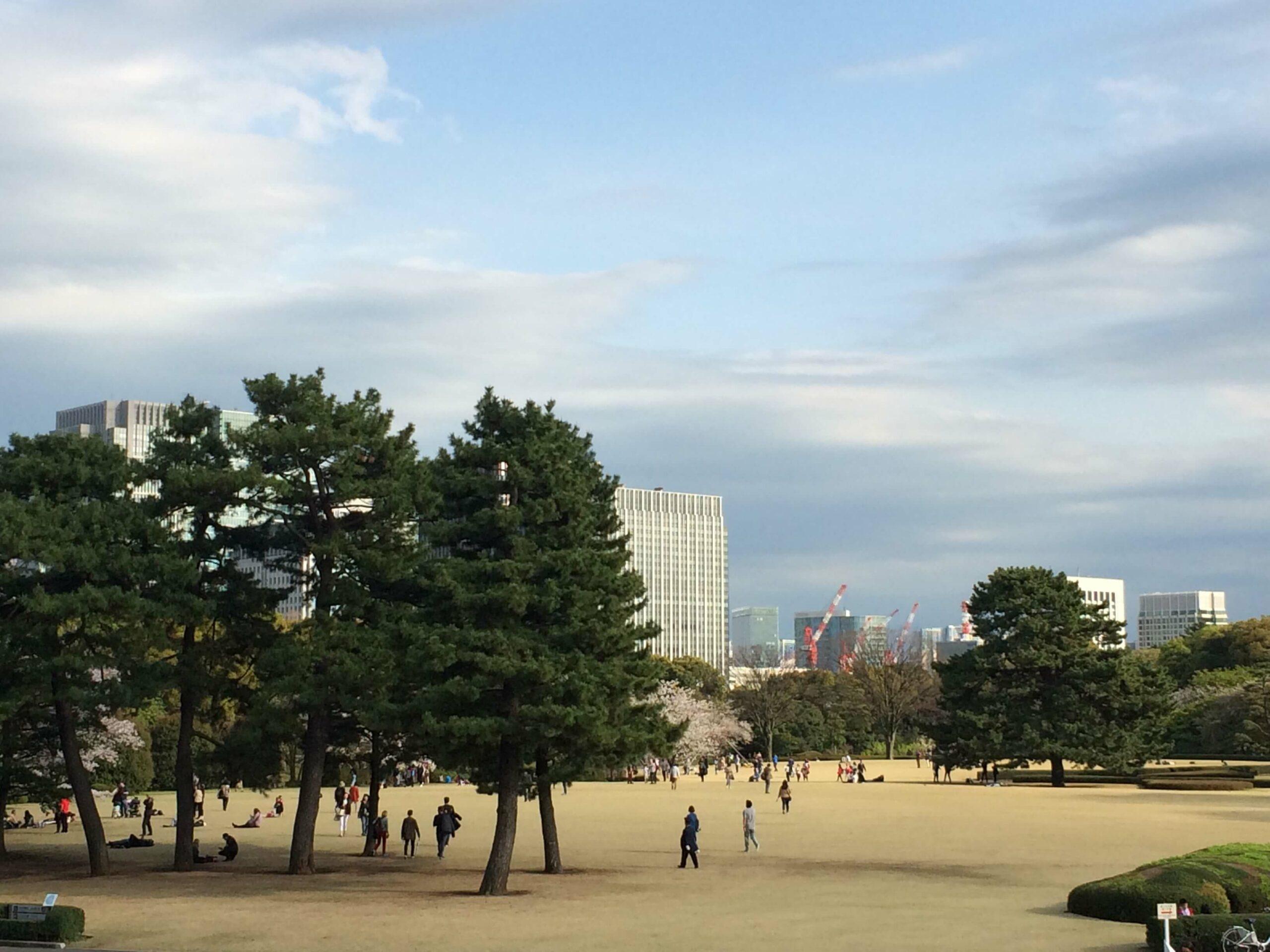 Kirschblüten in Tokio Annaway Travelblog 1221 park 4