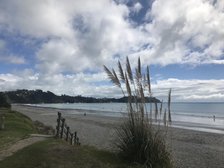 Waiheke Island - Auf den Spuren des Weines Annaway Travelblog Neuseeland Travel Reisen 1