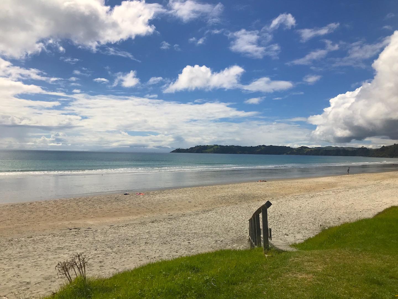 Waiheke Island - Auf den Spuren des Weines Annaway Travelblog Neuseeland Travel Reisen 2078