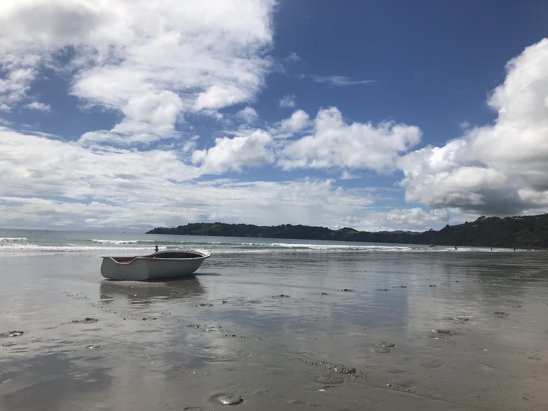 Waiheke Island - Auf den Spuren des Weines Annaway Travelblog Neuseeland Travel Reisen 2222