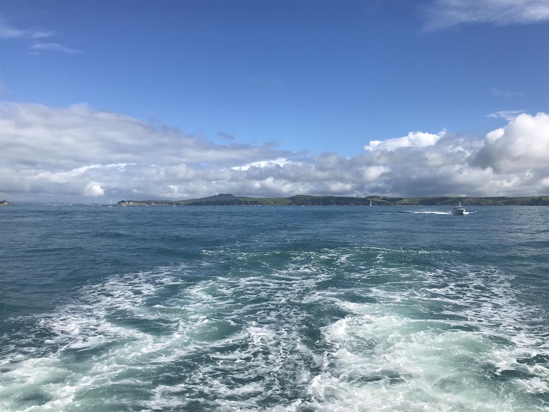 Waiheke Island - Auf den Spuren des Weines Annaway Travelblog Neuseeland Travel Reisen 3