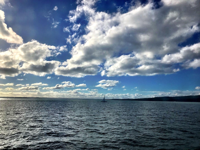 Waiheke Island - Auf den Spuren des Weines Annaway Travelblog Neuseeland Travel Reisen 4