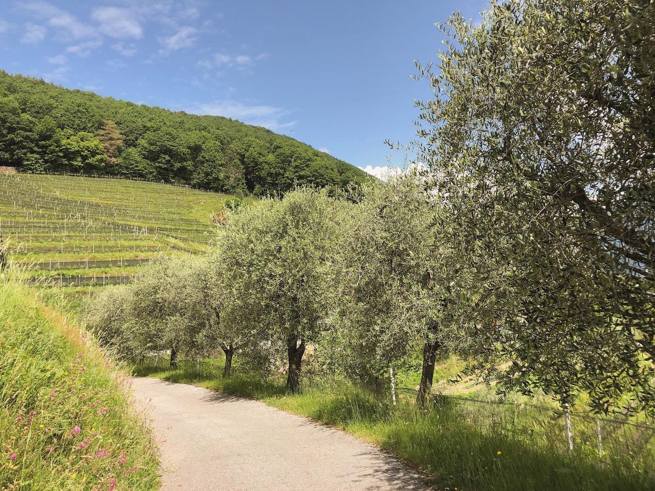 Rendez-vous mit der Schweiz Annaway Reiseblog Travelblog Lifestyle